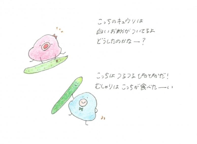 pakupaku_04-2